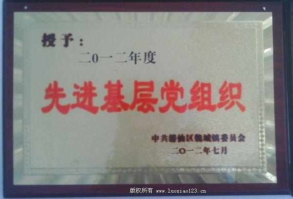 荣获2012年先进基层党组织-荣丽大枣合作社-集体荣誉-荣发村 第2张