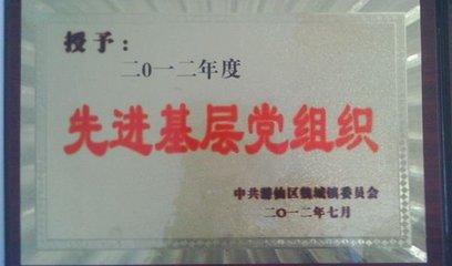 荣获2012年先进基层党组织
